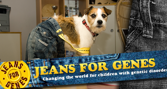 Even Scamp is Behind Jeans for Genes Day